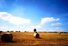 Opinión del campo del verano imagenes de archivo