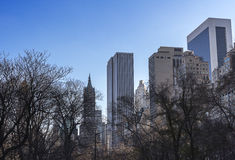 Opinión del Central Park a los edificios de highrise Imagen de archivo libre de regalías