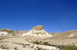 Opinión del desierto Fotografía de archivo