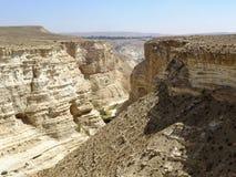 Opinión del desierto Imágenes de archivo libres de regalías