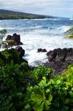 Opinión del este de la costa de Maui Imagen de archivo libre de regalías