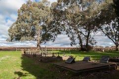 Opinión del Graveside - Barossa Valley Australia Fotos de archivo