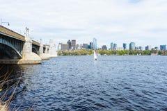 Opinión del horizonte de Boston del agua en el lado de Cambridge fotografía de archivo libre de regalías