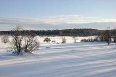 Opinión del invierno Imagen de archivo