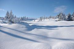 Opinión del invierno Imagen de archivo libre de regalías