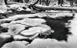 Opinión del invierno al arroyo congelado, a las ramitas heladas y a los cantos rodados helados sobre corriente rápida. Reflexiones Fotos de archivo libres de regalías