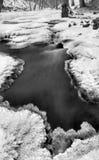 Opinión del invierno al arroyo congelado, a las ramitas heladas y a los cantos rodados helados sobre corriente rápida. Reflexiones Imágenes de archivo libres de regalías
