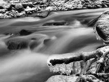 Opinión del invierno al arroyo congelado, a las ramitas heladas y a los cantos rodados helados sobre corriente rápida. Reflexiones Foto de archivo libre de regalías