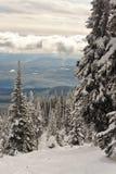Opinión del invierno de la ladera Imagenes de archivo
