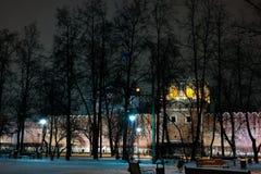 Opinión del invierno de la noche al monasterio de Donskoy, Moscú, Rusia foto de archivo libre de regalías
