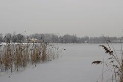 Opinión del invierno del lago de la costa de Pogoria fotografía de archivo