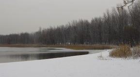 Opinión del invierno del lago de la costa de Pogoria imagen de archivo