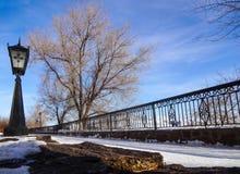 Opinión del invierno del terraplén con un árbol de la linterna y de una cerca contra el cielo azul Fotografía de archivo libre de regalías