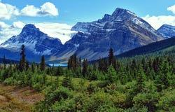 Opinión del lago bow en el parque nacional de Banff Foto de archivo libre de regalías
