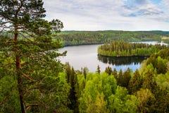 Opinión del lago en Finlandia Fotos de archivo