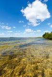 Opinión del lago summer Imagenes de archivo