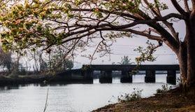 Opinión del lago village en Kerala fotografía de archivo libre de regalías