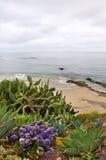 Opinión del Laguna Beach Foto de archivo libre de regalías