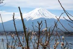 Opinión del lanscape de Fuji con un lago del kawaguchiko Fotografía de archivo