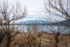 Opinión del lanscape de Fuji con un lago del kawaguchiko Foto de archivo libre de regalías