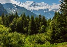 Opinión del macizo de la montaña de Mont Blanc de las cercanías de Plaine Joux imagen de archivo libre de regalías