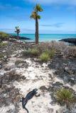 Opinión del mar de las Islas Gal3apagos Fotografía de archivo libre de regalías