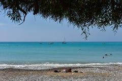 Opinión del mar debajo de un árbol mediterráneo Foto de archivo libre de regalías