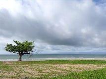 Opinión del mar del paisaje Imagen de archivo
