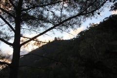 Opinión del monasterio de Kikkos en soporte Imagen de archivo