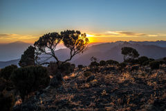 Opinión del Monte Meru de la ruta de Kilimanjaro Machame Imagen de archivo