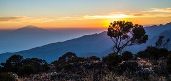 Opinión del Monte Meru de la ruta de Kilimanjaro Machame Fotografía de archivo libre de regalías