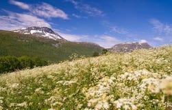 opinión del mountaine, Tromso, Noruega. foto de archivo