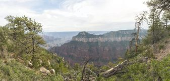 Opinión del norte del paisaje del borde del Gran Cañón Imagenes de archivo