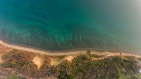 Opinión del ojo del ` s del pájaro de la orilla de mar Foto de archivo libre de regalías