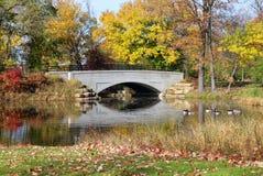 Opinión del otoño en un parque de la ciudad foto de archivo
