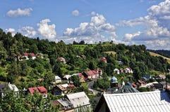 Opinión del pájaro de edificios y de árboles en montaña Fotos de archivo