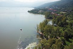 Opinión del pájaro del lago Qionghai en el ¼ ŒChina de Xichangï Foto de archivo