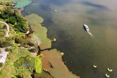 Opinión del pájaro del lago Qionghai en el ¼ ŒChina de Xichangï Fotografía de archivo libre de regalías