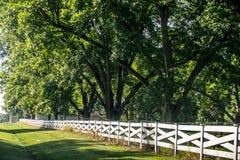 Opinión del país, con la cerca blanca Fotos de archivo