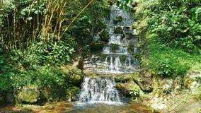 Opinión del paisaje de la cascada en la selva tropical almacen de video