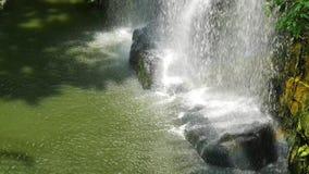 Opinión del paisaje de la cascada en la selva tropical metrajes