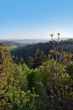 Opinión del paisaje en Bolonia, Italia Foto de archivo libre de regalías