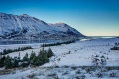 Opinión del paisaje del invierno de Islandia con el cielo azul y árboles y sunli foto de archivo