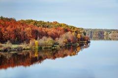 Opinión del paisaje del otoño de la caída sobre el bosque coloreado multi del otoño que refleja en el río Fotos de archivo