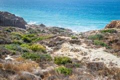 Opinión del paisaje y de la playa en Torrey Pines State Reserve y la playa foto de archivo libre de regalías