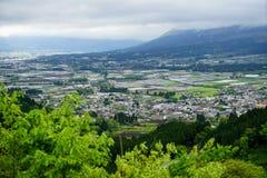 Opinión del panorama de la montaña y de la ciudad con primero plano verde del arbusto Foto de archivo libre de regalías