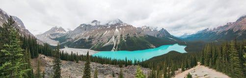 Opinión del panorama del lago Peyto imagen de archivo libre de regalías
