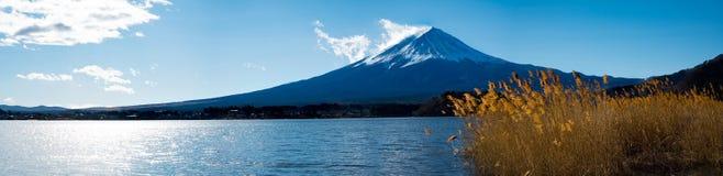 Opinión del panorama del Mt Fuji en el parque de Oishi Foto de archivo