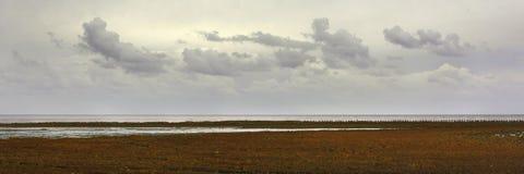 Opinión del panorama sobre la costa este de la isla holandesa Texel de wadden, en los Países Bajos fotos de archivo libres de regalías