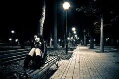 Opinión del parque de la noche Fotografía de archivo